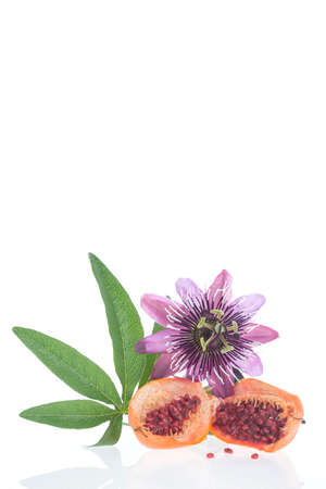 passion fruit flower: Flower and fruit Passionflower on a white background