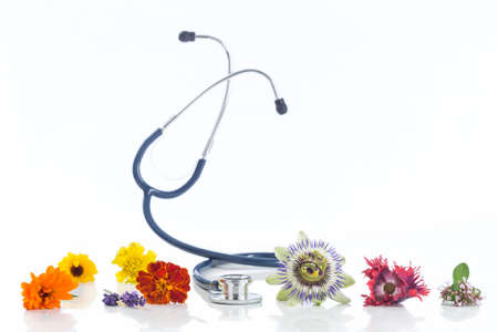 medicinal plants: Alternative medicine herbs and stethoscope on white background Stock Photo