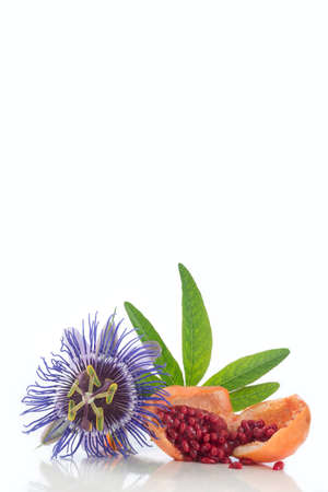 Flower and fruit Passionflower cut Herba Passiflora on white