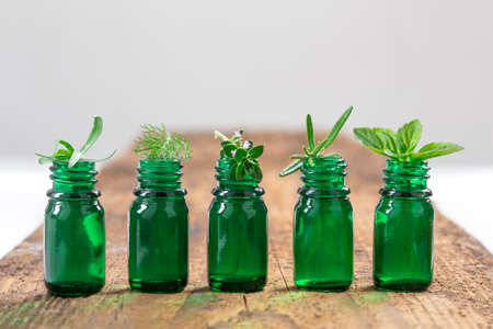 green herbs: Green Bottle of essential oil with Fresh herbs and medicinal plants on wooden background.