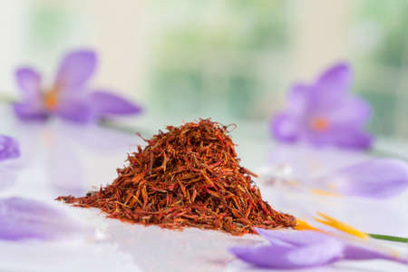 Flower crocus and dried saffron spice on white background.