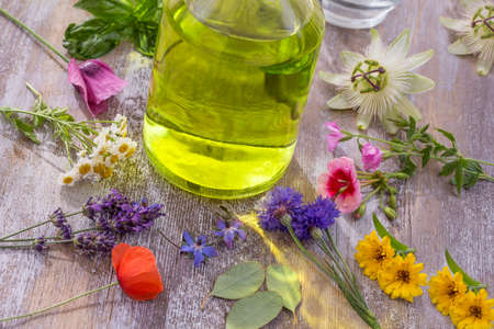 Aroma essential oil. Top view r bottle among colourful fresh flowers, medicinal herbs variety, scattered on cracked purple wooden table.