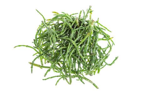 Samphire 沿岸ハーブとして知られている海豆深紅 pickleweed またはアッケシソウ