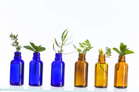 Blue and brown Bottle of essential oil with herbs and flowers set up on white background .