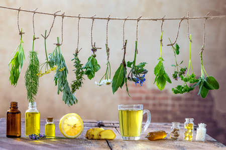 Border with Various fresh herbs and herbal tea on white fresh medicinal plants hanging on the top . Preparing medicinal plants for phytotherapy and health promotion,