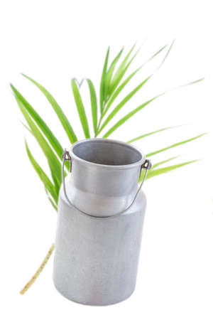 Vintage milk can : Aluminium milk can isolated on white greenery background.