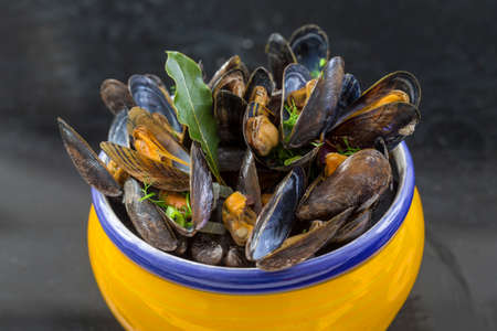 French blue mussel with herbs in a yellow. Seafood in dark background