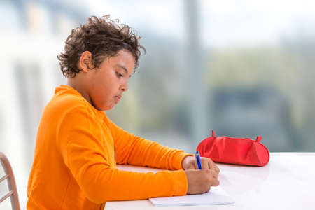 studious child. schoolboy,doing homework