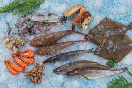 Several type of fresh fish on a mediterranean seafood market on ice over blue background