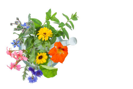 Naturopathic flower and herb selection in a mortar with pestle over white background.