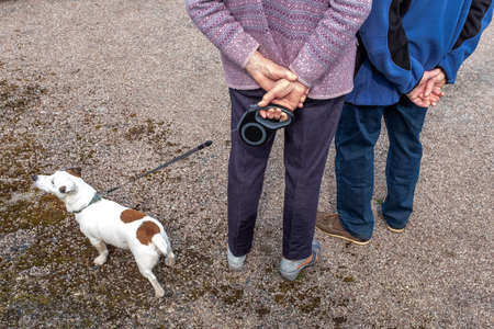 Active senior woman with dog on a walk in a nture road back view hand crossed Foto de archivo - 124986485