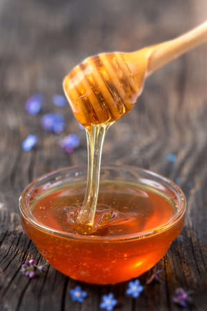 Honey pouring from stick to the bowl wooden background Фото со стока