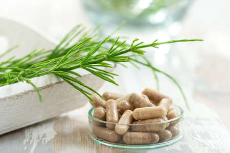 horstail Herbs with alternative medicine herbal supplements and ptablet with glass mortar