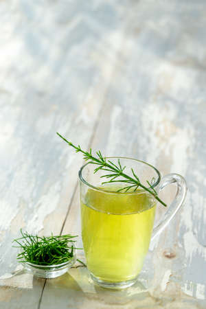Alternative Medicine. Herbal Therapy. Horsetail infusion in glass cup. grey background