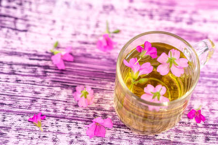 A cup of mallow tea with fresh blooming malva sylvestris plant against pink wooden background Imagens