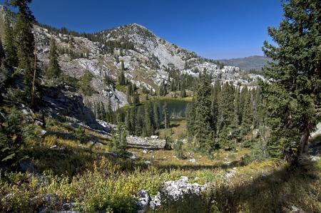 glen: Hidden Glen in the Wasatch Mountains, Utah  Stock Photo