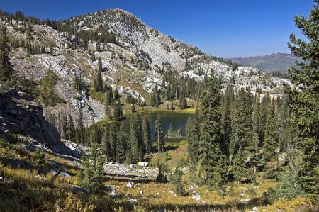 wasatch: Hidden Glen in the Wasatch Mountains, Utah  Stock Photo