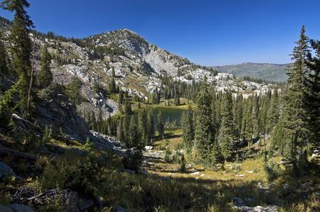 Hidden Glen in the Wasatch Mountains, Utah  Stockfoto