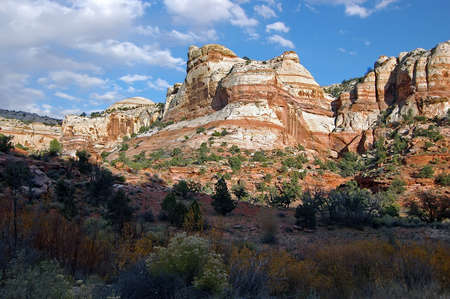 Escalante Cliffs with Fall Colors Stock Photo