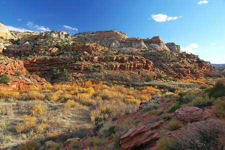 Escalante Cliffs with Fall Colors Stock Photo