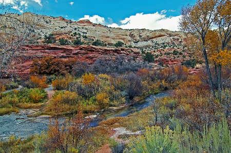 Escalante Cliffs with Fall Colors Stockfoto