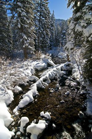 Winter Snow and Mountain Stream
