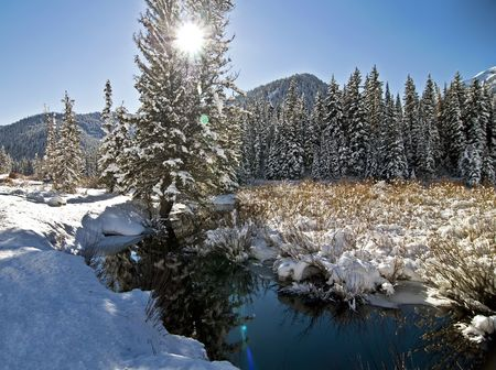sitesee: Winter Snow and Mountain Stream