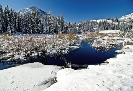wasatch: Winter Snow and Mountain Stream