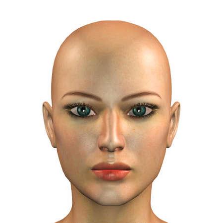 calvo: Ilustración de la cara de una mujer caucásica aislada en un fondo blanco Foto de archivo