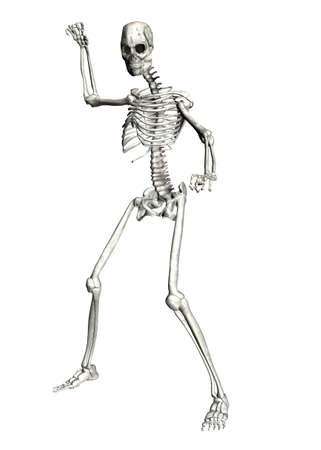 3d scary: Illustration of a skeleton isolated on a white background