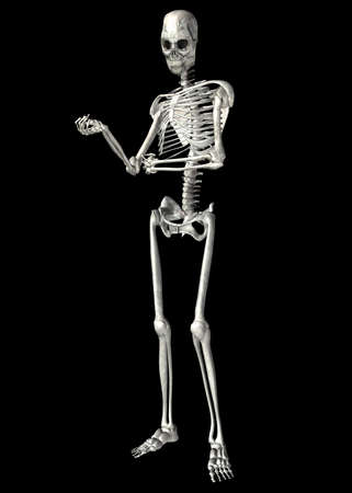 Illustration of a skeleton isolated on a black background Stock Illustration - 12743284