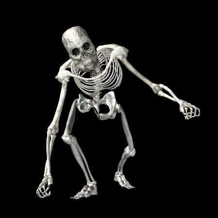 halloween skeleton:  Illustration of a skeleton isolated on a black background