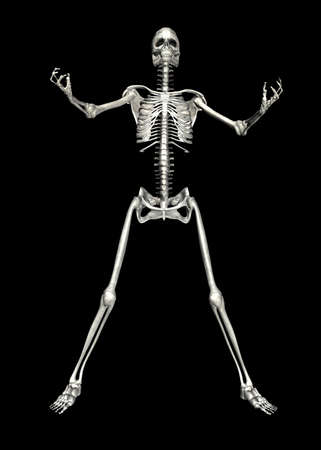 Illustration of a skeleton isolated on a black background Stock Illustration - 12743272