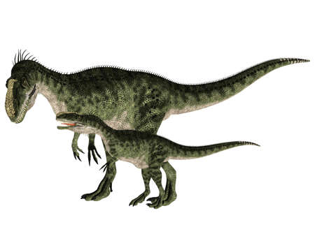 hatchling: Illustration of an adult and a young Monolophosaurus  dinosaur species  isolated on a white background Stock Photo