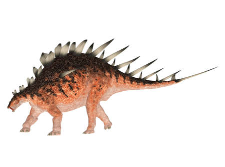 epoch: Illustration of a Kentrosaurus  dinosaur species  isolated on a white background Stock Photo