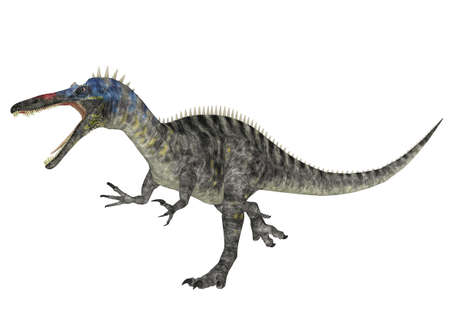 epoch: Illustration of a Suchomimus  dinosaur species  isolated on a white background