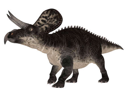epoch: Illustration of a Zuniceratops  dinosaur species  isolated on a white background Stock Photo