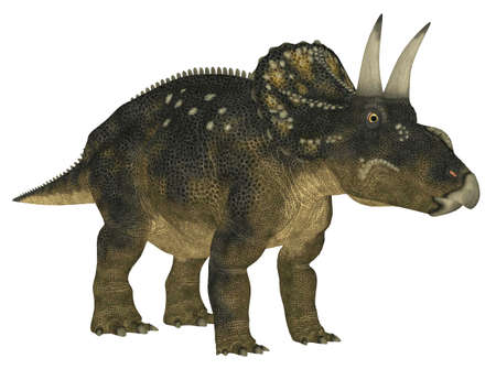 Illustration of a Nedoceratops  dinosaur species formerly known as Diceratops  isolated on a white background Stock Photo