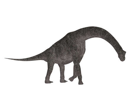 epoch: Illustration of a Brachiosaurus  dinosaur species  isolated on a white background