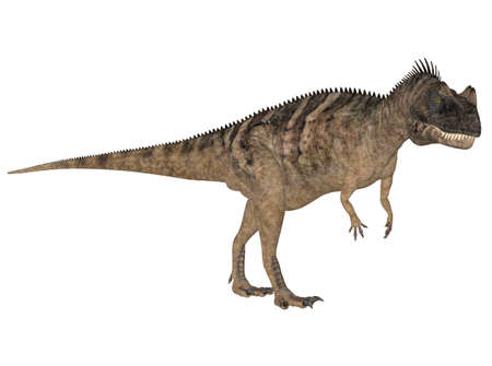 reptilia: Illustration of a Ceratosaurus  dinosaur species  isolated on a white background