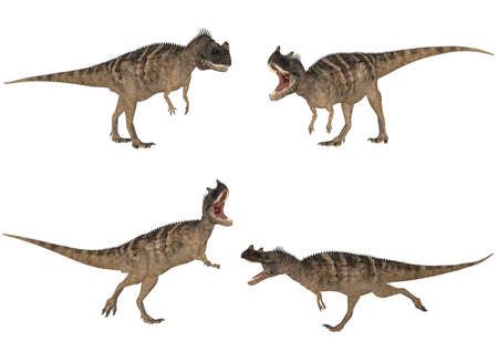 epoch: Illustration of a pack of four  4  Ceratosaurus with different poses isolated on a white background Stock Photo