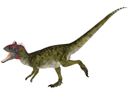 epoch: Illustration of a Cryolophosaurus  dinosaur species  isolated on a white background