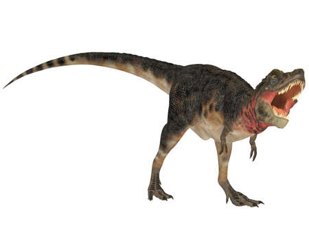 epoch: Illustration of a Tarbosaurus  dinosaur species  isolated on a white background Stock Photo
