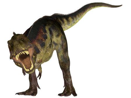 epoch: Illustrazione di specie di dinosauro un tirannosauro isolato su uno sfondo bianco Archivio Fotografico