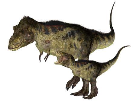 tiranosaurio rex: Ilustración de un adulto y un joven dinosaurio Tyrannosaurus las especies aisladas en un fondo blanco