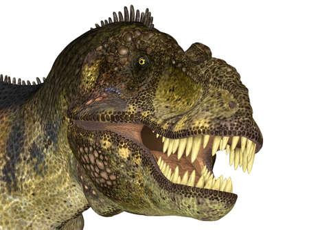 tiran: Illustratie van het hoofd van een Tyrannosaurus dinosaurussen op een witte achtergrond Stockfoto