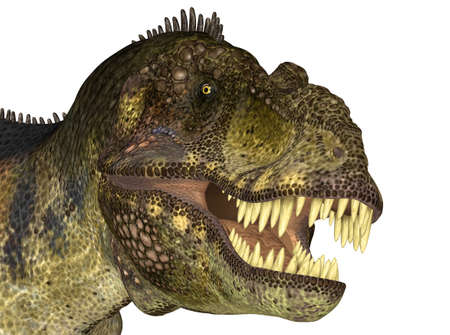 zoomed: Illustration of the head of a Tyrannosaurus  dinosaur species  on a white background