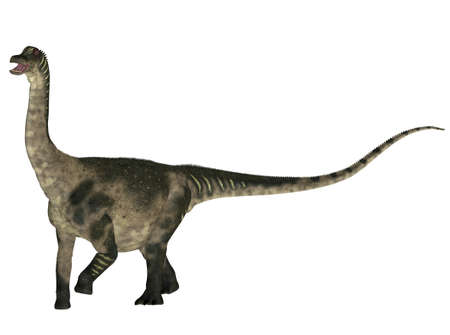 epoch: Illustration of a Antarctosaurus  dinosaur species  isolated on a white background