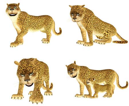 Ilustraci�n de un paquete de cuatro cuatro leopardos con diferentes poses y expresiones aisladas sobre un fondo blanco photo