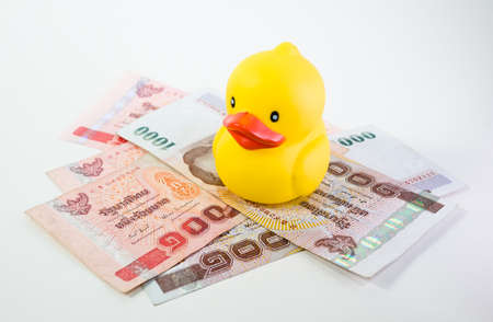 rubber duck on money Stock Photo - 17307447